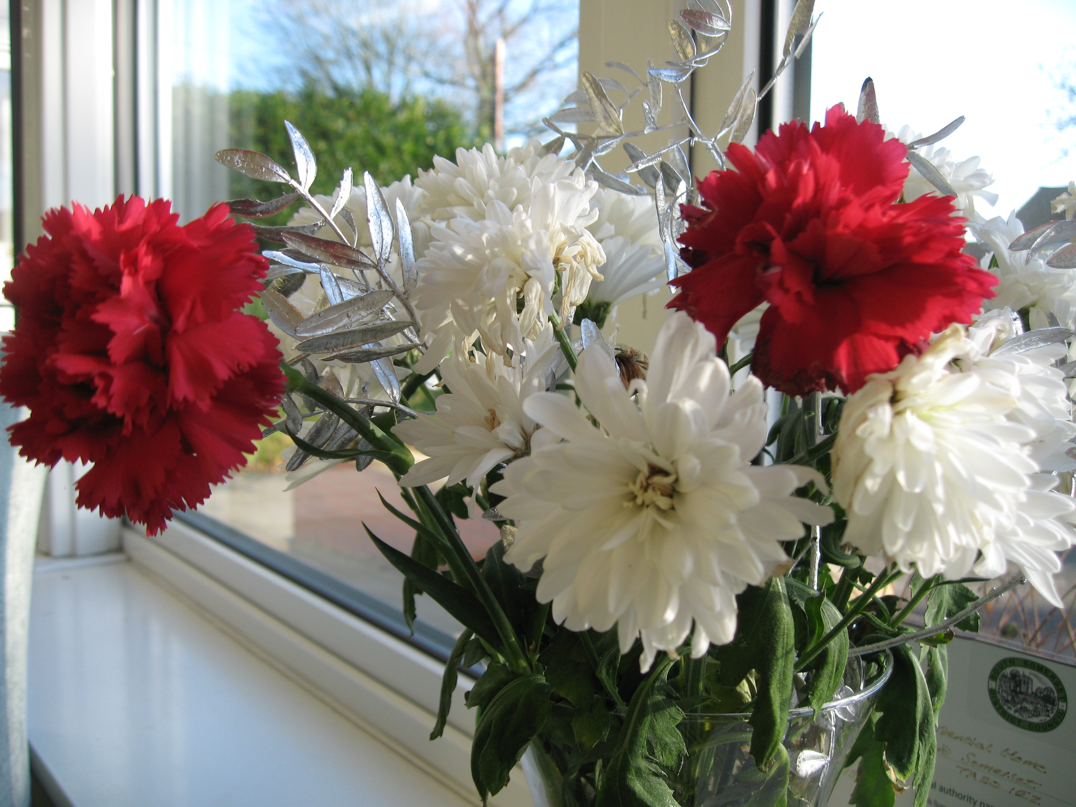 Red And White Flowers Plant Lore
